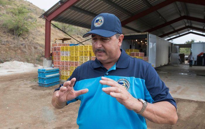 Agricultura sale en defensa del uso de glifosato