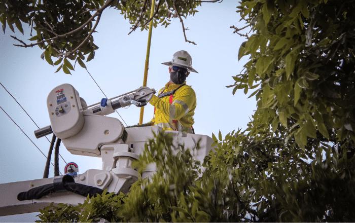 AAPP defiende ejecución de LUMA Energy